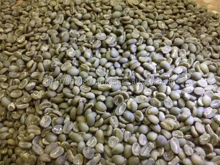 50 Kg Jute Bag Organic Raw Dried Green Robusta Coffee beans For sale