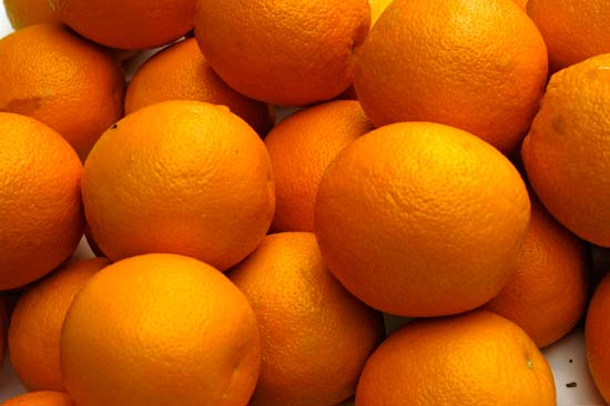 best quality Sweet Fresh Mandarin Naval Orange on sale in bulk