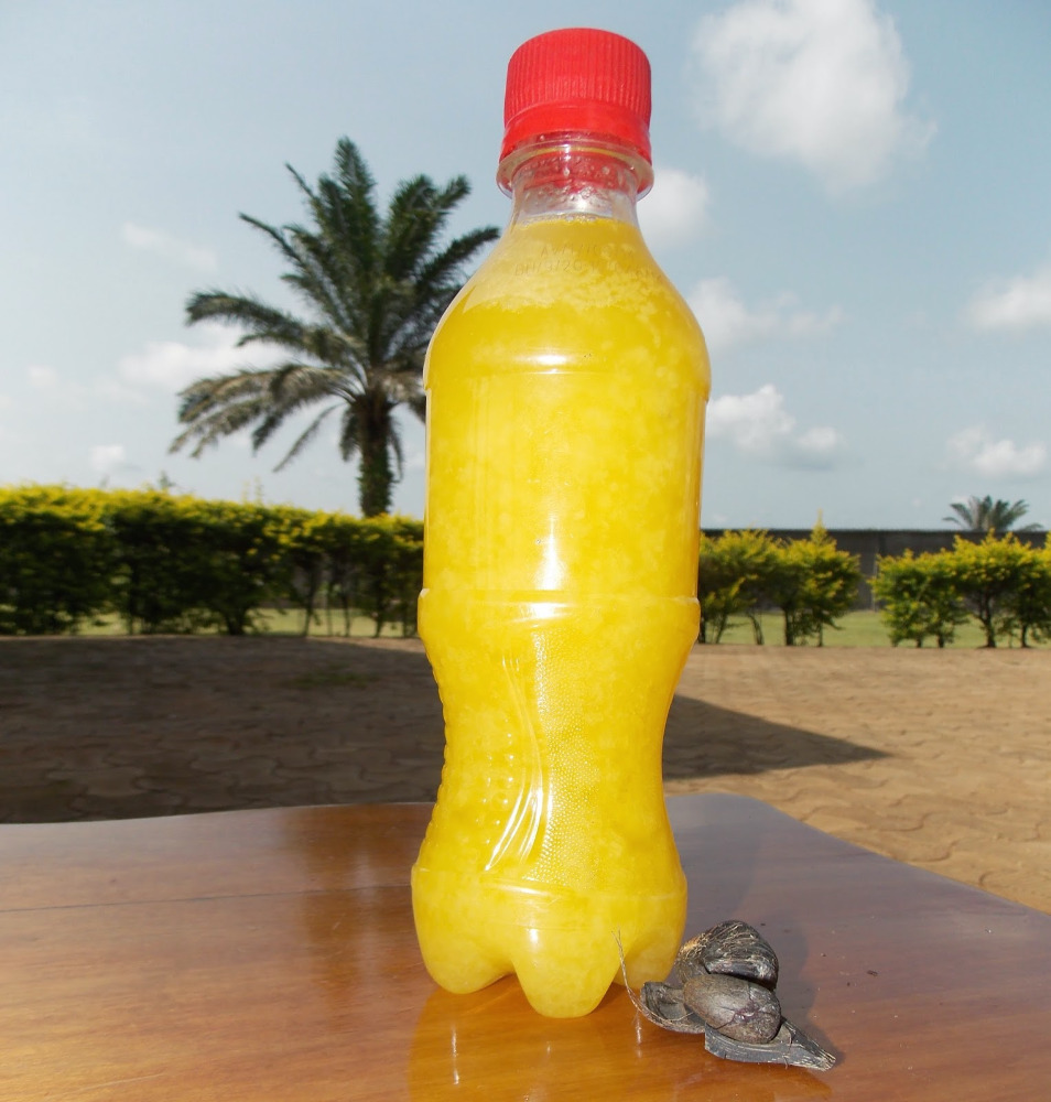 PALM KENNEL OIL FOR SALE