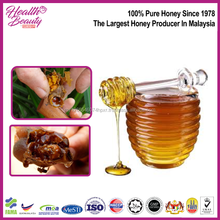 Pure Natural High Quality Stingless Bee Honey In Malaysia