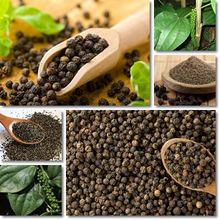 BLACK PEPPER 580GR/L BEST PRICE OF VIET NAM ORIGIN