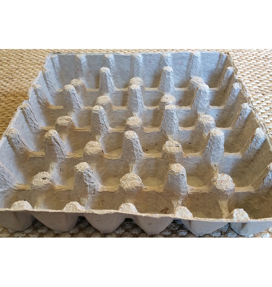 Factory Price Paper Pulp Egg Tray
