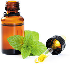 Factory supply Wholesale 100% pure menthol oil