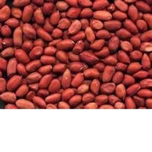 top crop cheap red skin raw peanuts for sale