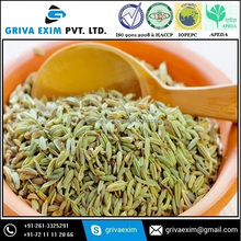 Green Indian Fennel Seeds or Oil from Gujarat