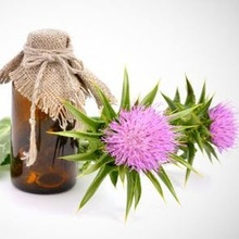 St.Mary's Thistle Oil