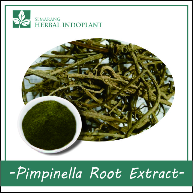 PIMPINELLA ROOT POWDER EXTRACT
