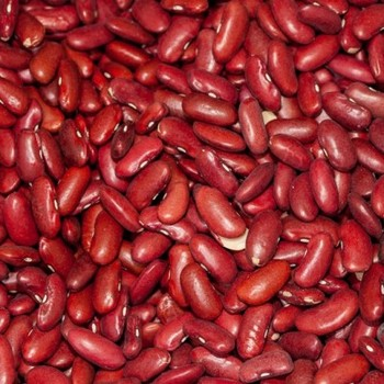 Dark Red Kidney Beans Bulk/ Dried Red Beans for Sale/Wholesale Price for Black Kidney Beans