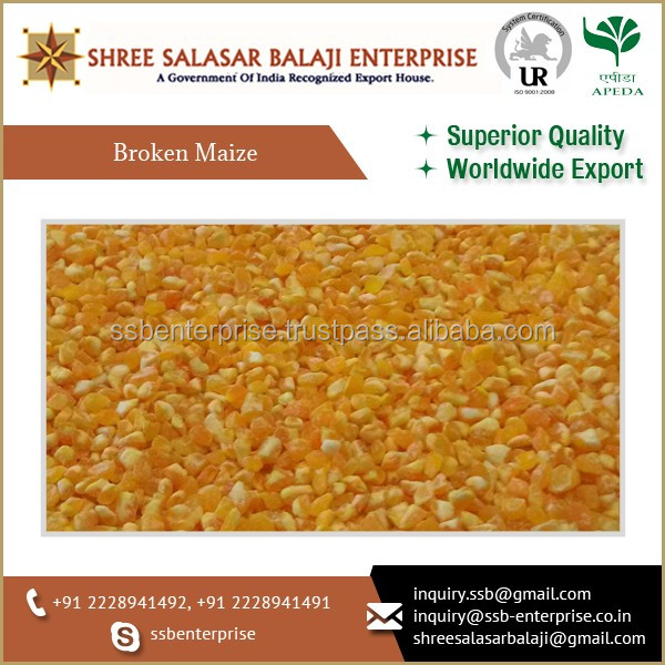 Best Selling Broken Maize from a Reputed Manufacturer Size 1 mm to 2 mm
