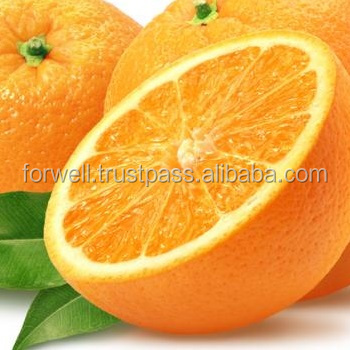 New crop fresh Valencia orange from Egypt best quality 2018