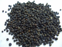 Black peper p.e. / Piper nigrum L. (GMP Factory) in large quantity