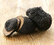 Fresh quality white/Black truffles at whole sale prices