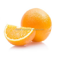 Common Cultivation Type and Orange Yellow Color Mandarin Orange