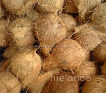 Fresh Thai Young Coconut