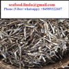 Vietnam Dried Anchovy - Sprats well dried Available _Email: seafood.linda(at)gmail(dot)com_WHATSAPP: +84 989 322 607