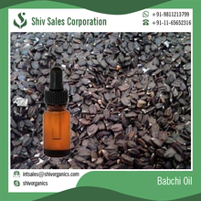 Reliable Trader of Babchi Seeds Essential Oil