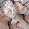 Halal Whole Frozen Chicken and Chicken Parts