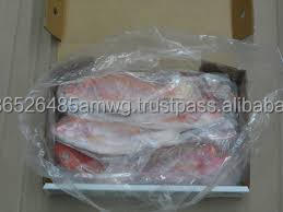 IQF frozen red snapper fish/ Red Tilapia Fish/Red sea Fish