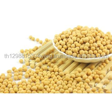 Dried Soybeans / Dried Soybean Seeds / Non-Gmo Soybeans