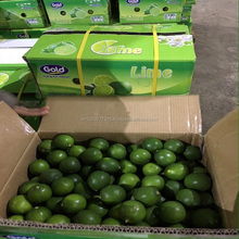 fresh lime/ export exported in bulk/ fresh lemon seedless