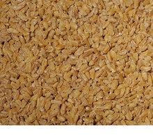 best quality bulgur wheat for sale at very good price