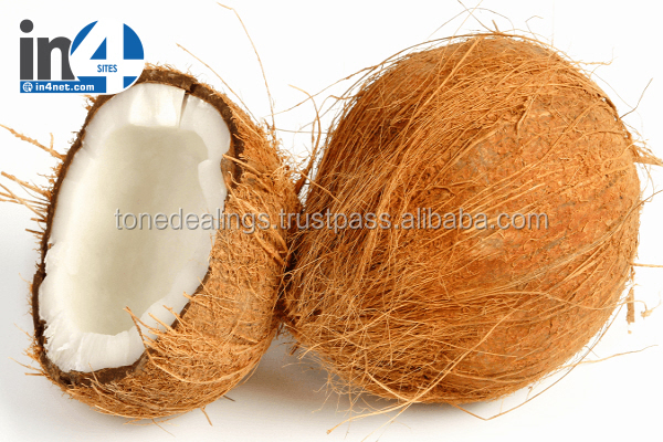 Fresh semi husked coconut exporter from india