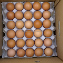 fresh farm table eggs