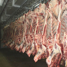 Frozen Whole Beef Carcass at cheap prices
