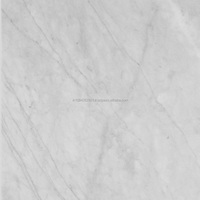 ARCTIC GRAY POLISHED MARBLE TILES.