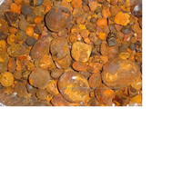 Germany best quality Grade A Cheap Ox Gallstones Cattle Gallstones Cow Gallstones