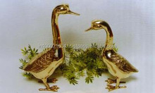 Brass Duck pair for home decor