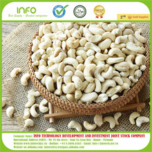 Raw Cashew Nuts Vietnam Origin//Quality Raw Cashew Nuts