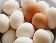 Fresh white shell chicken table eggs