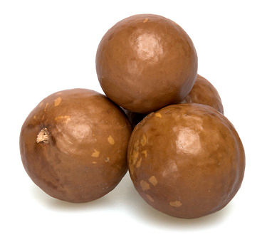 Macadamia Nuts (In Shell)/ Macadamia Nuts For Sale/ Good taste Raw Macadamia Nuts with shell