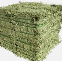 Low price Alfalfa Hay in Bales