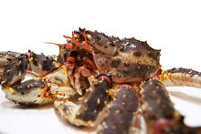 Best Quality Whole Live King Crab / Blue Crabs / Export Frozen King Crab