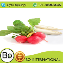 100 % PURE AND NATURAL RADISH OIL (RAPHANUS SATIVUS)