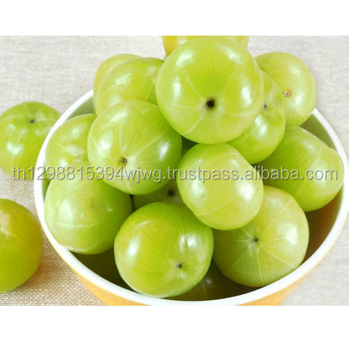 Pure Raw Fresh Amla Fruits for Sale