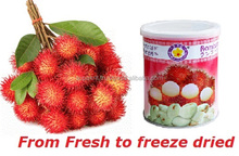 Thai Ao Chi Brand Vacuum Freeze Dried Rambutan 40g