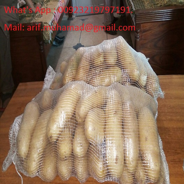 SWEET POTATO EXPORT STANDARD PRICE FOR SALE HIGH QUALITY WITH BEST PRICE FOR YOU