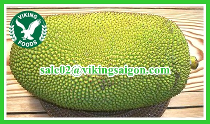 [HACCP - JACKFRUIT] BIG SUPPIER - COMPETITIVE PRICE - FRESH JACKFRUIT
