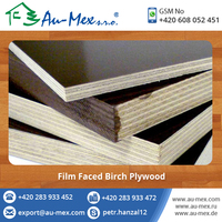 High Quality Exterior Birch Plywood Film Faced Birch Plywood