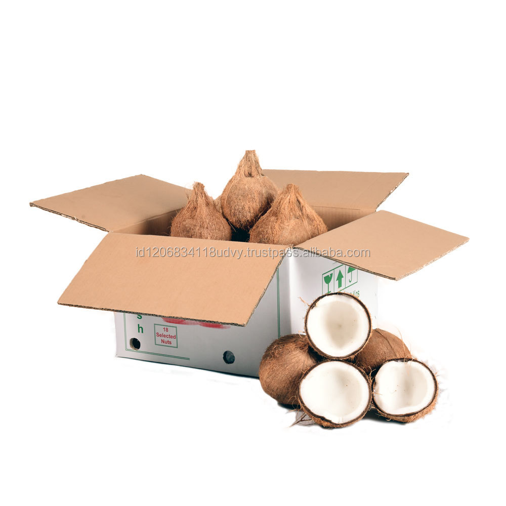 Export Quality Indonesia Premium Fresh Coconut Semi Husked Box Pack