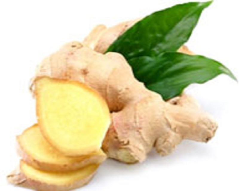 factory directly supply fresh ginger and garlic for garlic and ginger importer