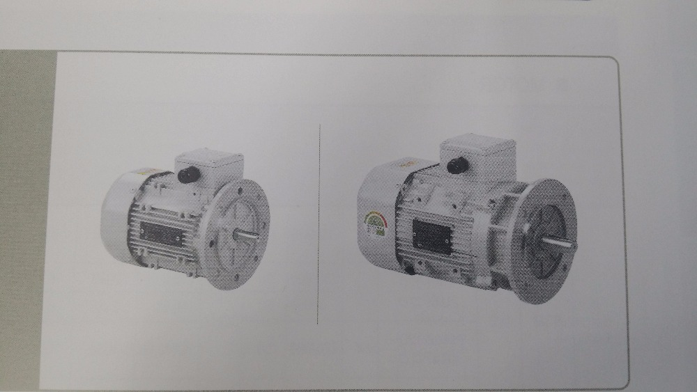 AC MOTOR FLANGE MOUNTED TYPE