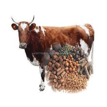 Cow Feed for sale