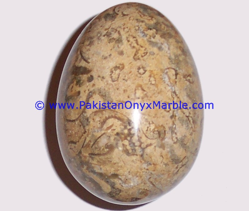 NEW MARBLE EGGS DECORATIVE FOSSIL COREL MARBLE