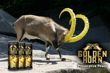 Carob and Ginseng Added HALAL Energy Drink for the First Time In The World