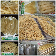 NO CHEMICAL_NO SAND_ DRIED FISH MAW FROM VIET NAM