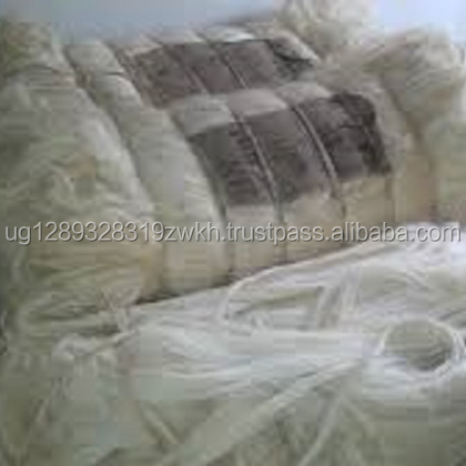 Top Quality UG grade Sisal fiber from Uganda farm